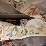 2. Klipp till och vik en remsa (ca 8 cm) av tyget och lägg in kedern.