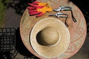 design-garden-gardening-162443