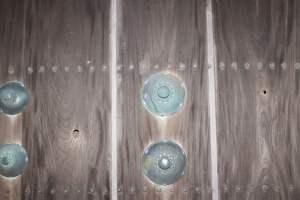 鯱ノ門の銃弾跡
