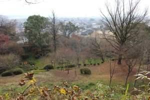 隈府城跡からの眺め
