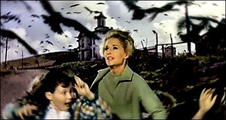 The Birds Publicity Montage