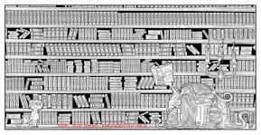 biblioteca_-byn
