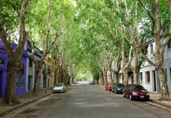 BA's Palermo neighborhood