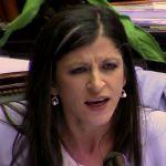 Presentaron un proyecto para echar a Fernanda Vallejos de la Cámara de Diputados