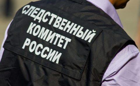 Следственный комитет РФ возбудил уголовное дело о фейке по поводу коронавируса