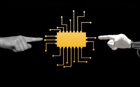 «Готов к цифре»: новый онлайн-сервис запущен в Ленобласти