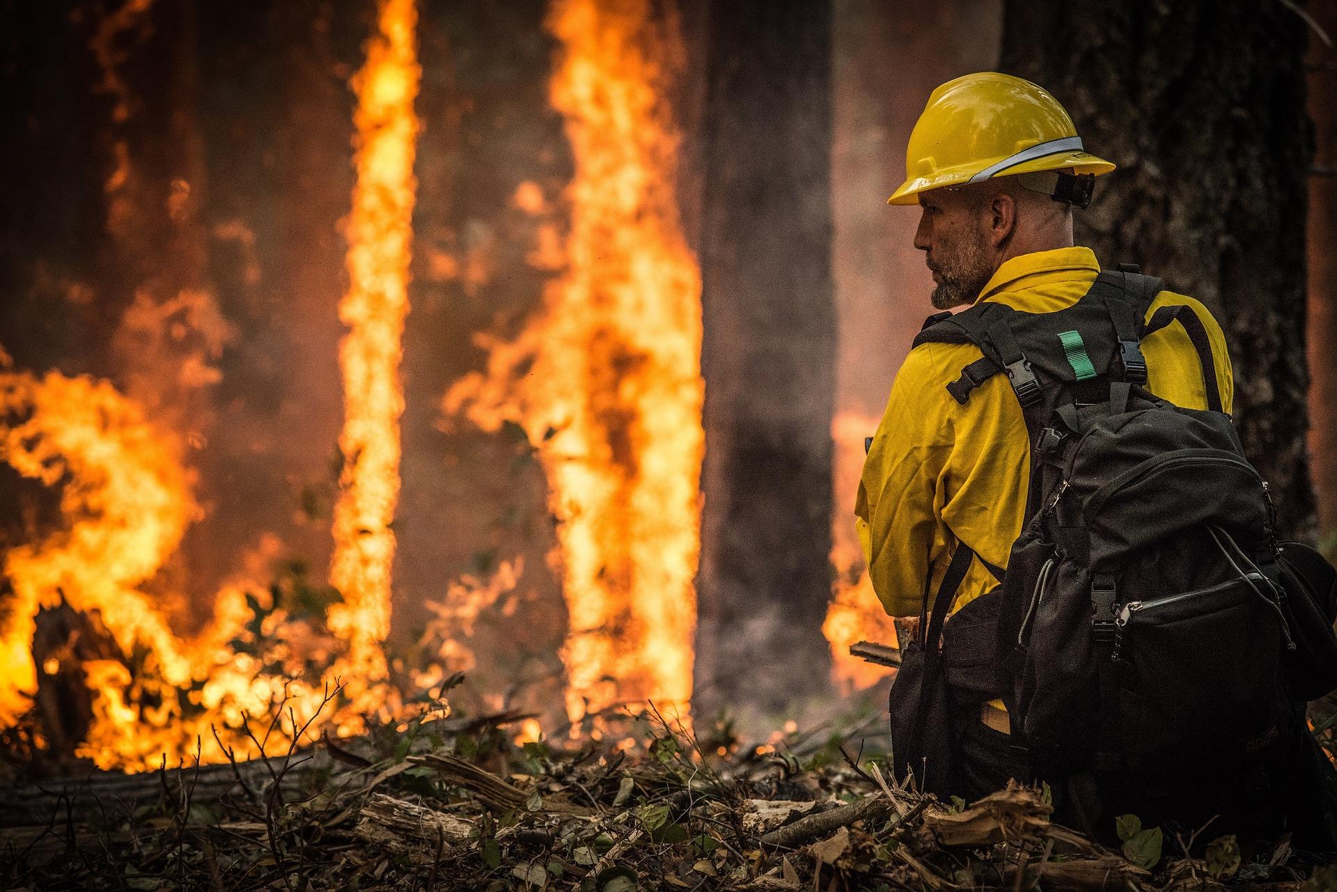 На Дальнем Востоке потушили восемь пожаров за день