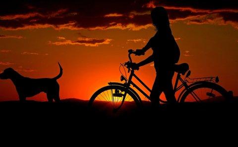 Россиянка за лето доехала на велосипеде из столицы до Крайнего Севера