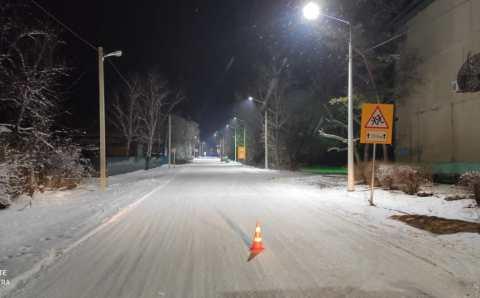 На трассах Приамурья установили травмобезопасные электроопоры