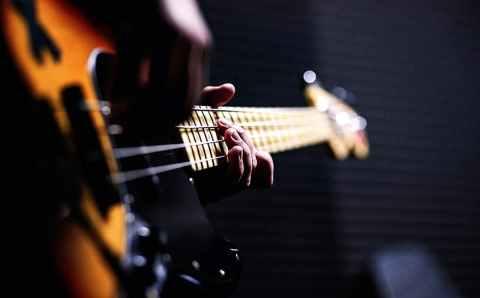 Гитары, их ареал обитания и разновидности