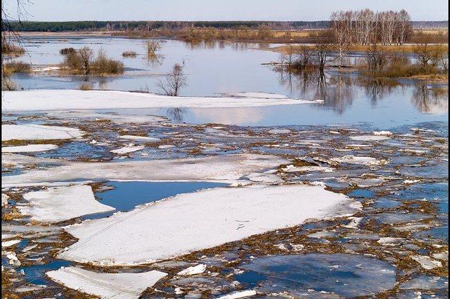 В Саратовской области подтопило 6 низководных мостов из-за паводка