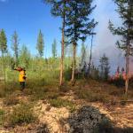 Якутские огнеборцы за сутки справились более чем с 40 пожарами