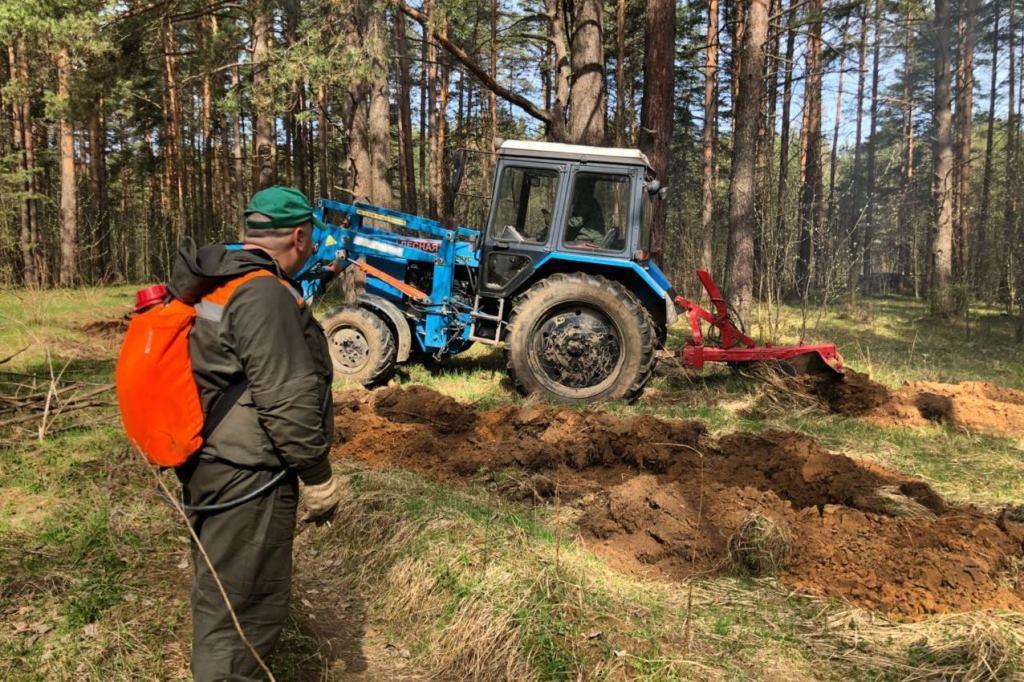 Особый противопожарный режим ввели в Ярославской области
