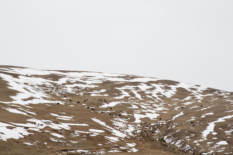 paysages sichuan