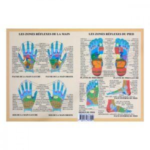 Connaitre et apprendre les zones reflexes du pied