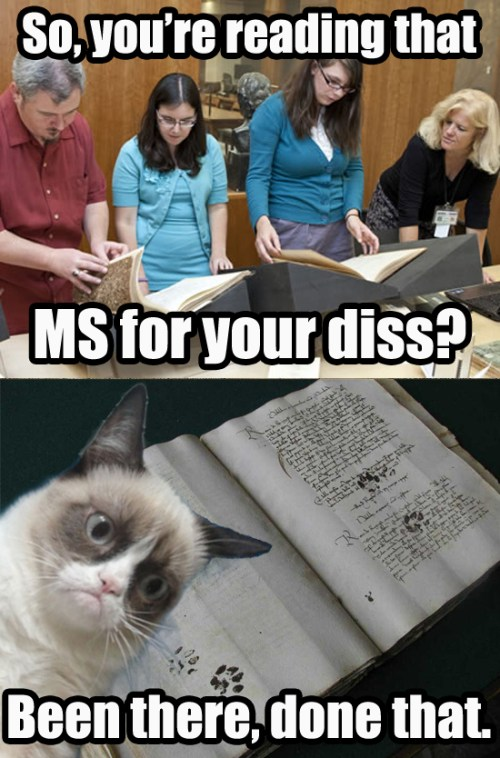 Grumpy Cat has already written a paper on what you're working on.