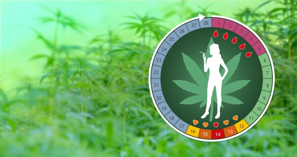 Cannabis Can Affect The Menstrual Cycle! - CBD MEDICAL HEMP OIL