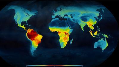 Vertebrate Biodiversity