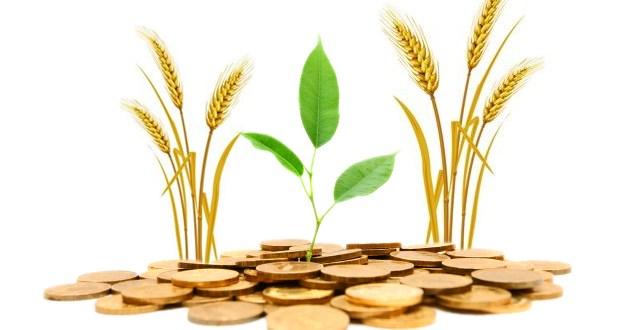 قرض زراعي