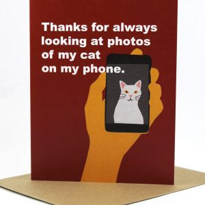 Thanks for looking at photos of my cat