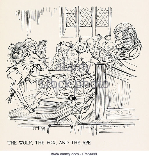 wolf fox ape