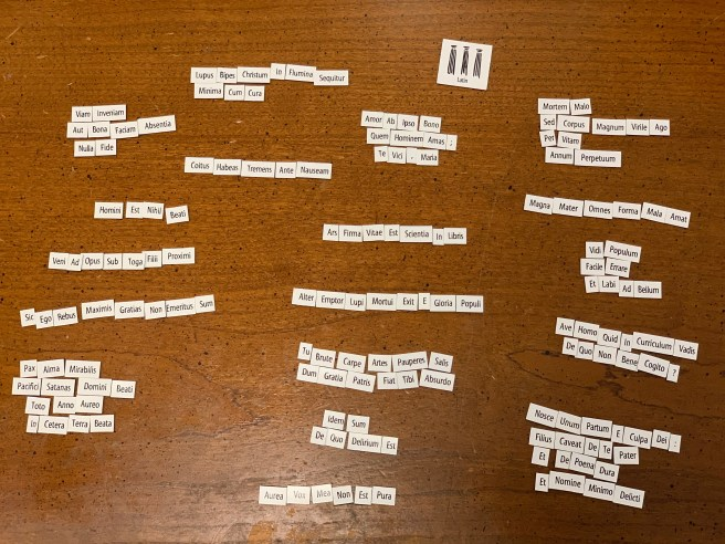Photograph of Magnetic Poetry, in Latin: 18 small clusters of tiny white rectangular magnets with Latin text printed in black.  The rest of this blog post consists of a transcript of that text, with translations and a tiny bit of commentary.  The translations are colloquial rather than literal, but T. H. M. believes he can justify his colloquialisms (at least as long as every journal and book editor he's run into aren't the arbiter!).