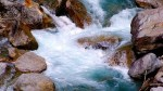 running creek oracle card meaning