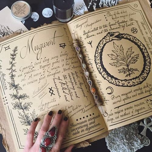 Mugwort benefits and spiritual meaning