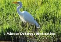 3 Minute Meditation de stress