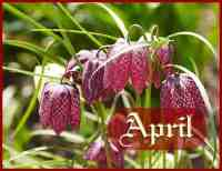 Month of April Meaning