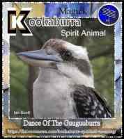 kookaburra meaning