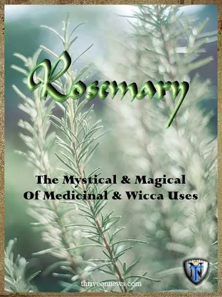 rosemary meaning