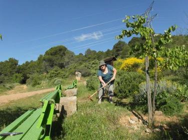 Sentier Francis Lastenouse - travaux 12.06.13- 5