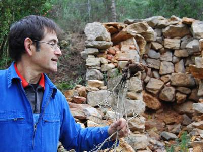 Sentier Francis Lastenouse - Travaux Decembre 2012 (32)