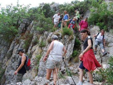 Sentier Francis Lastenouse - Balade Guidée 19 Juillet 2014 35