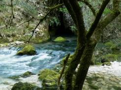La sorgente carsica che scaturisce dalla montagna