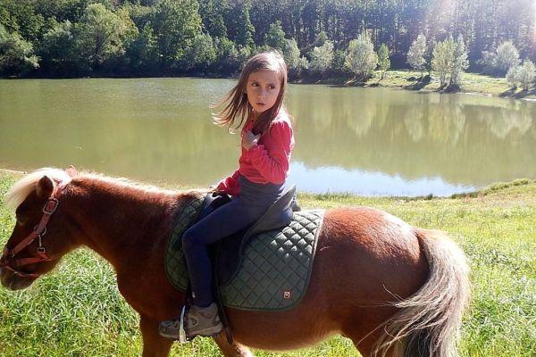 Con i pony da Rincine al lago dell'Aina, nelle Foreste Casentinesi