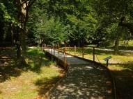 Il percorso accessibile a Lagdei