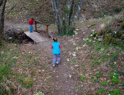 Lungo il sentiero tra Lierna e Moggiona