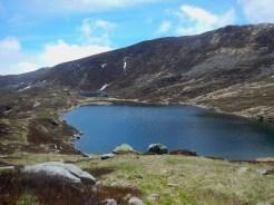 I laghi di Sillara (in maggio, tanta acqua e i mirtilli ancora marroni)