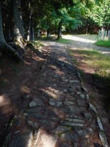 L'antica strada che sale da Vallombrosa