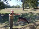 Gino e la guida volontaria del parco