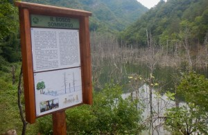Lungo il sentiero natura del Lago di Poggio Baldi