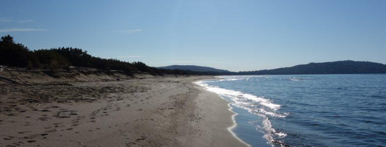 Il parco e la spiaggia della Feniglia, e l'oasi di Orbetello