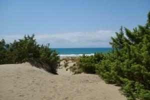 Le due della spiaggia di Collelungo