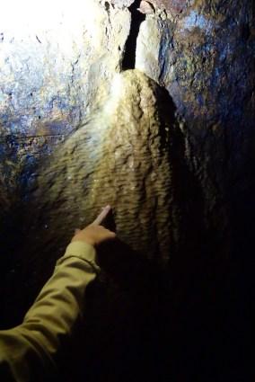 Un a concrezione calcarea da una delle feritoie di drenaggio