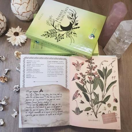 L'Herbier des Sorcières ¤ Hagel ©Editions Danaé