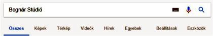 A Google a beállítások sokaságát nyújtja