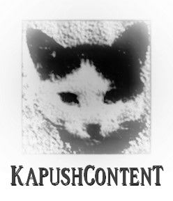 kapushcontent-seo-content-for-post-penguin-world