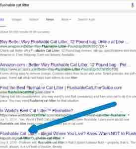 Flushable Cat Litter - Nov 6_1016
